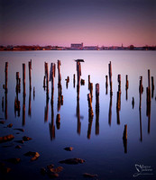 from water and light, Comacchio (GALLERY)